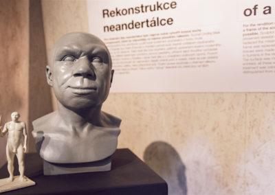 Wallmarketing Anthropos – Moravské zemské muzeum v Brně 04