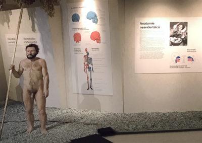 Wallmarketing Anthropos – Moravské zemské muzeum v Brně 06
