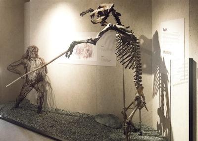 Wallmarketing Anthropos – Moravské zemské muzeum v Brně 07