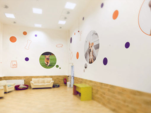 Walldesign v Psím hotelu